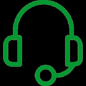 Icon Headset 300